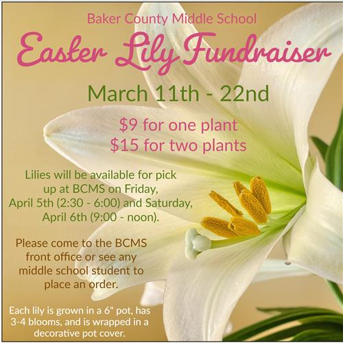 Easter Lily Fundraiser